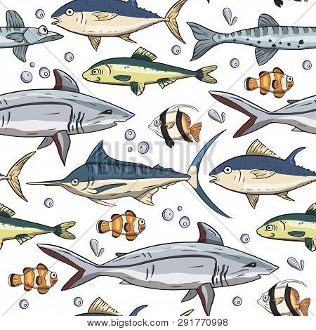 Sea Seamless Vector Pattern. Ocean Tropicar Exotic Illustration With Tropical Underwater Animals - S