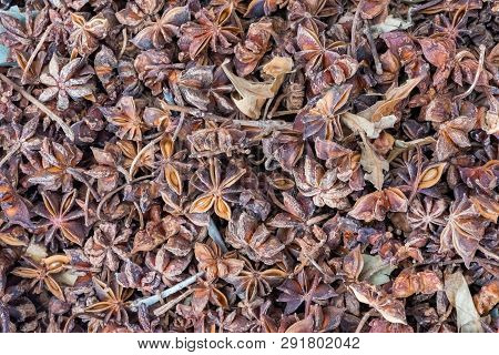 Anise Stars Heap In A Chinese Market In Chengdu, China