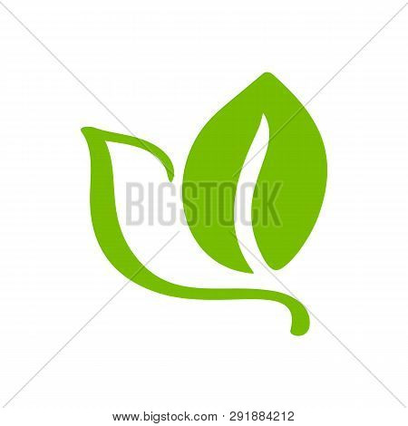 Logo Of Green Leaf Of Tea. Ecology Nature Element Vector Icon Organic. Eco Vegan Bio Calligraphy Han