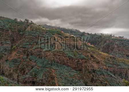 Overgrown Mountains And Dark Storm Clouds. Portuguese Island Of Madeira