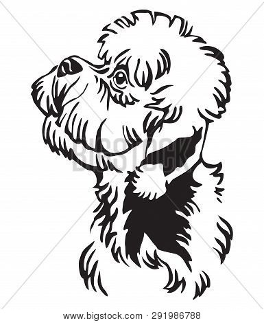 Decorative Outline Portrait Of Dandie Dinmont Terrier Dog Looking In Profile, Vector Illustration In