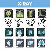 X-ray Icon Set Vector. Radiology Scan. Broken Human Bone. Medical Symbol. Fracture Structure. Health Hospital Medicine Design. Line, Flat Illustration poster