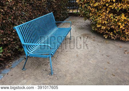 blue bench in the park alley