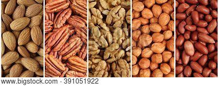 Nuts Collage, Long Banner - Almonds, Pecan Nuts, Walnuts, Hazelnuts, Peanuts. Closeup