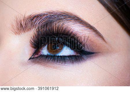 Eyes With Make Up Close Up. Makeup Closeup. Eyebrow Long Eyelashes. Beauty Salon. Beautiful Macro Fe