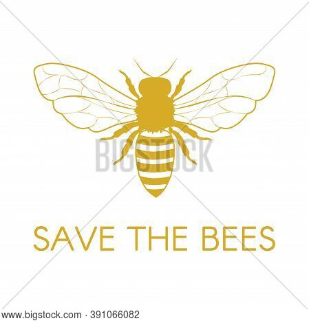 Save The Bees. Honey Bee. Vector Illustration Eps