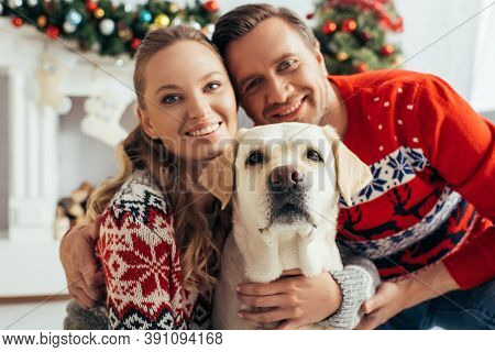Couple In Knitted Sweaters Hugging Labrador In Decorated Apartment On Christmas