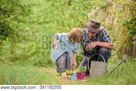 Planting Flowers. Make Planet Greener. Growing Plants. Take Care Of Plants. Boy And Father In Nature