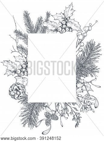 Vector Template For Christmas Greeting Card Or Invitation With Hand Drawn Winter Plants, Spruce Bran