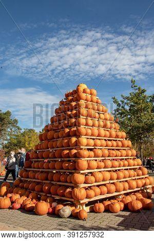 Klaistow, Germany - October 22, 2020: Berlin-brandenburg's Largest Pumpkin Exhibition In Klaistow Pr