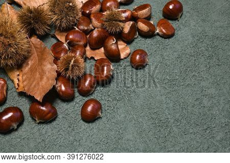 Chestnuts With Hedgehogs And Chestnut Leaves On Green Rustic Background