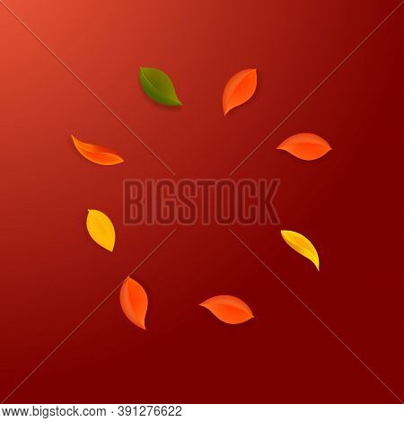 Falling Autumn Leaves. Red, Yellow, Green, Brown Neat Leaves Flying. Frame Colorful Foliage On Memor