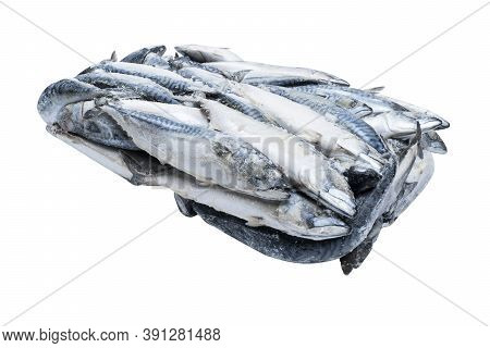 Frozen Mackerel Isolated. Frozen Group Of Fish. Iced Fish. Heap Of Mackerel Isolated On White Backgr