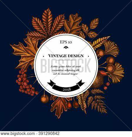 Badge Over Design With Fern, Dog Rose, Rowan, Ginkgo, Maple, Oak, Horse Chestnut, Chestnut Hawthorn
