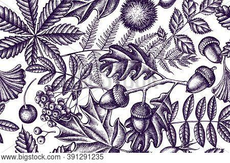 Artistic Seamless Pattern With Fern, Dog Rose, Rowan, Ginkgo, Maple, Oak, Horse Chestnut, Chestnut H