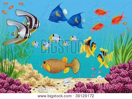 Underwater landscape with various water plants and swimming tropical fish. All objects are grouped.