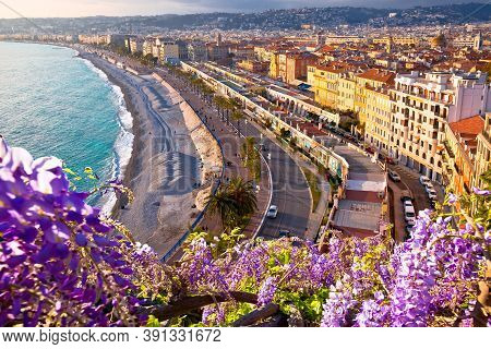 City Of Nice Promenade Des Anglais Waterfront Flower View, French Riviera, Alpes Maritimes Departmen