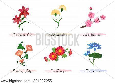 Watercolor Botanic Garden Nature Plant Flower Tiger Lily Carnation Plum Blossom Morning Glory Daisy