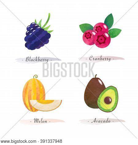 Organic Nature Healthy Food Fruit Blackberry Cranberry Melon Avacado