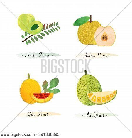 Organic Nature Healthy Food Fruit Amla Fruit Asian Pear Gac Fruit Jackfruit