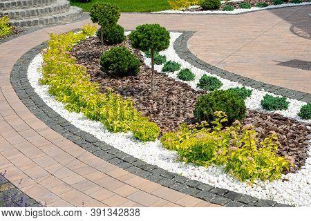 Landscape Design. Landscape Design With Plants, Tree Bark And White Pebbles