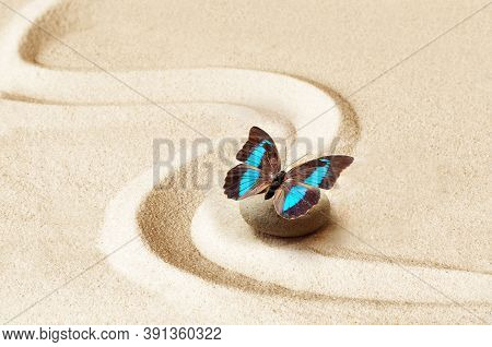 Zen Garden Meditation Stone Background And Butterfly With Stones And Lines In Sand For Relaxation Ba