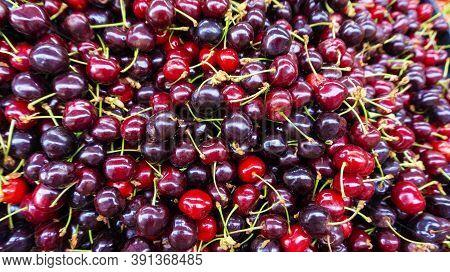 Sweet Cherry Background. The Abundance Of Juicy Berries Of Ripe Cherries Top View Macro Photo With C