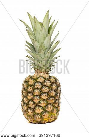 Pineapple Isolated. One Whole Pineapple With Green Leaves Isolated On White Background. Single Whole