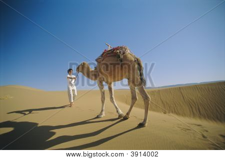 Woman outdoors in the desert with a camel poster
