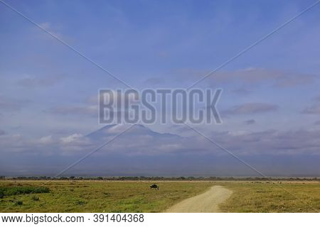 The Dirt Road Goes Forward Towards Mount Kilimanjaro. The Snow-capped Summit Is Hiding In The Clouds