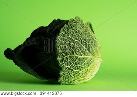 Savoy Cabbage, Tundra Cultivar. Beautiful Outer Greenish-yellow, Emerald And Green Leaves Are Formin
