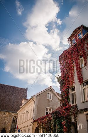 Erfurt Street, Germany. Details. Houses, Autumn Wild Grapes And Beautiful Sky