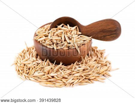 Unpeeled Oat Grains In Wooden Bowl And Spoon, Isolated On White Background. Organic Dry Oat Seeds.