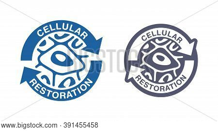 Cellular Restoration Formula Stamp - Epidermis Structure Restore - Anti-aging Cosmetics And Cosmetol