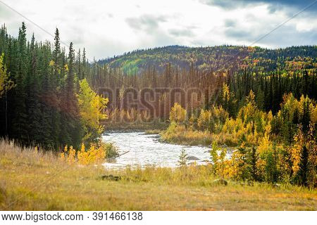 Scenic View Of Savage River In Denali National Park At Fall