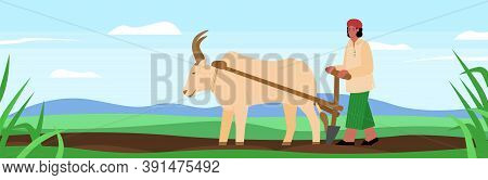 Indian Farmer Plowing The Land On A Buffalo, Flat Cartoon Vector Illustration. Agricultural Scenery