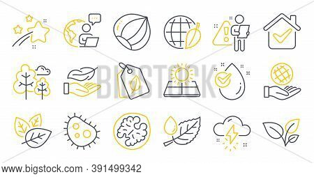 Set Of Nature Icons, Such As Environment Day, Tree, Leaf Dew Symbols. Thunderstorm Weather, Safe Pla
