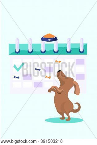 Animal Care, Dog Feeding, Happy Cheerful Brown Puppy Stands On Its Hind Legs And Reaches For The Bow