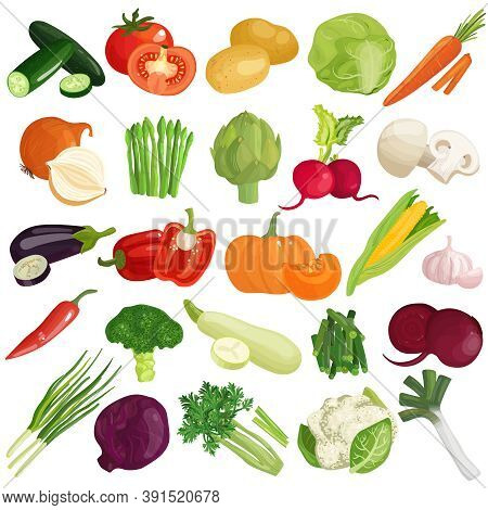 Vegetables Icons Set With Pumpkin, Cabbage, Tomato, Artichoke, Carrot, Spring Onion, Zucchini And Mu