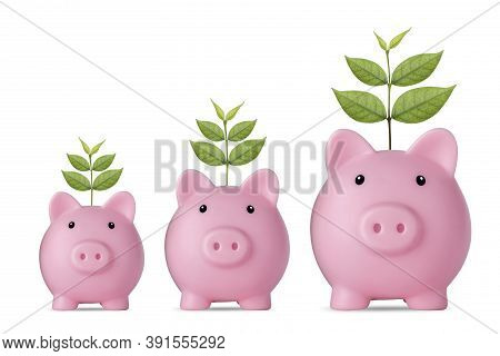 Business Investment And Saving Growth For Advertising Concept. Plant Growing On Pink Piggy Bank On I