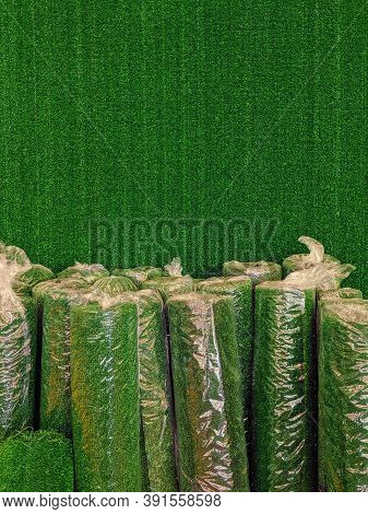 Rolls Of Synthetic Grass Or Plastic Grass Wrapped In More Plastic On A Wall Covered In Synthetic Gra