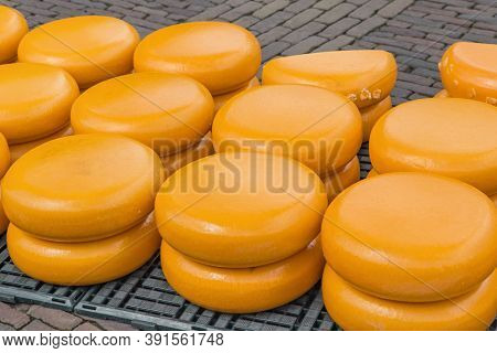 Cheese at traditional cheese market in Alkmaar Netherlands