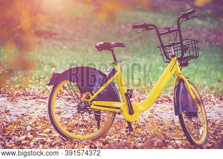 Bike For Bicycle-sharing Is In The City Park
