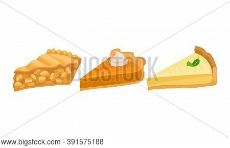 Pieces Of Baked Sweet Pie With Filling And Crust Made Of Shortcrust Pastry Vector Set