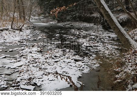 Snowy Sheridan Creek, Rattray Marsh, Mississauga, Ontario