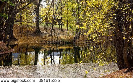 Picturesque Autumn Pond With Yellow Leaves And Reflection In The Water