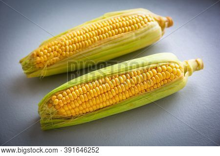 Two fresh corncobs in the kitchen