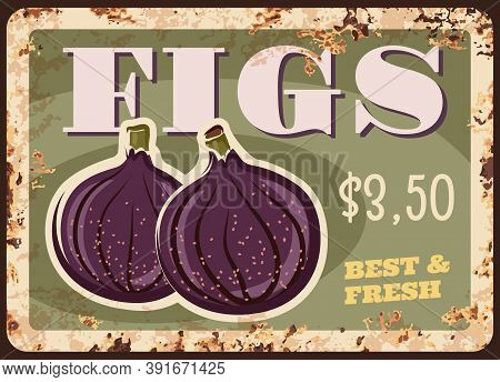 Figs Fruit Rusty Metal Plate With Price, Food Farm Market, Vector Vintage Poster. Juicy Figs Fruits,