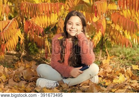 Little Child Enjoy Learning At Backyard Or Park. Kid Study With Book. Self Education Concept. Hobby
