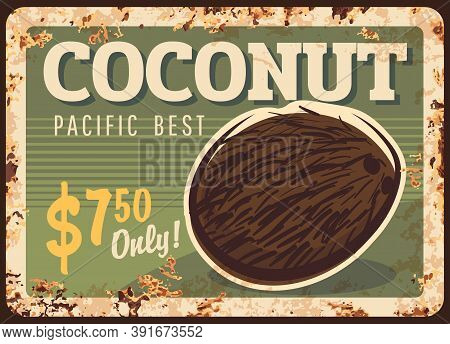 Coconut Nuts Metal Rusty Plate, Food Store Price Or Vintage Poster, Vector. Tropical Organic Raw Foo